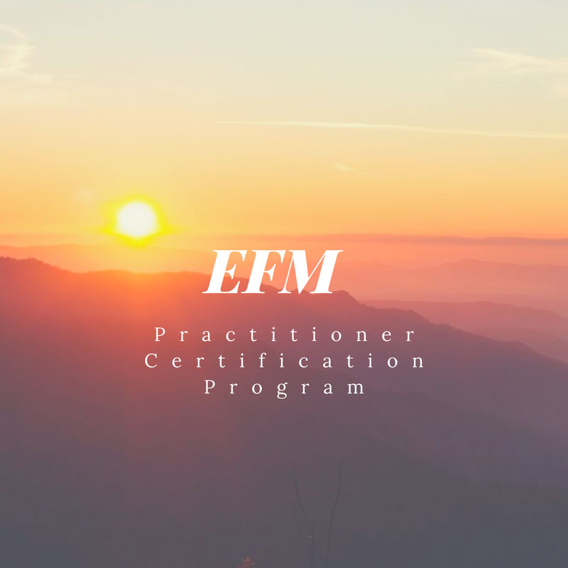 Efm Practitioner Certification Program Nancy Mae